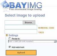 BayIMG is a free uncensored image hosting that provided by Pirate Bay, one of the world biggest BT resources portal.
