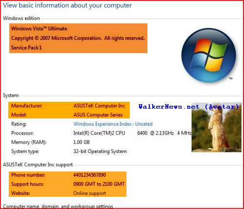 How to add an OEM logo and related information to Windows Vista SP1 System Properties window
