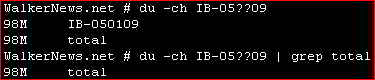 Using du command to show total file size of some selected files in Linux command prompt.
