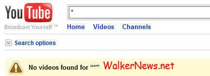 YouTube does not allow user to search video using the single asterisk mark.