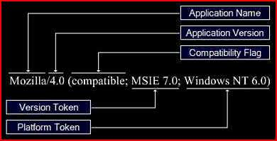 The structure of Internet Explorer user agent string.