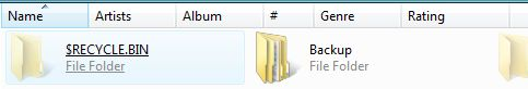 How to identify a Windows hidden file or folder?