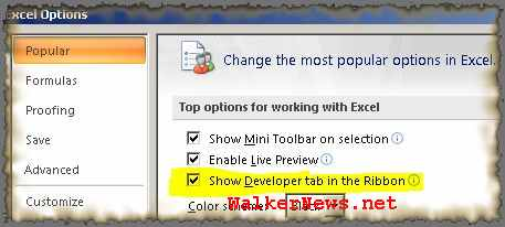 Option to turn on and off the Developer Tab on Office 2007 Ribbon menu interface.